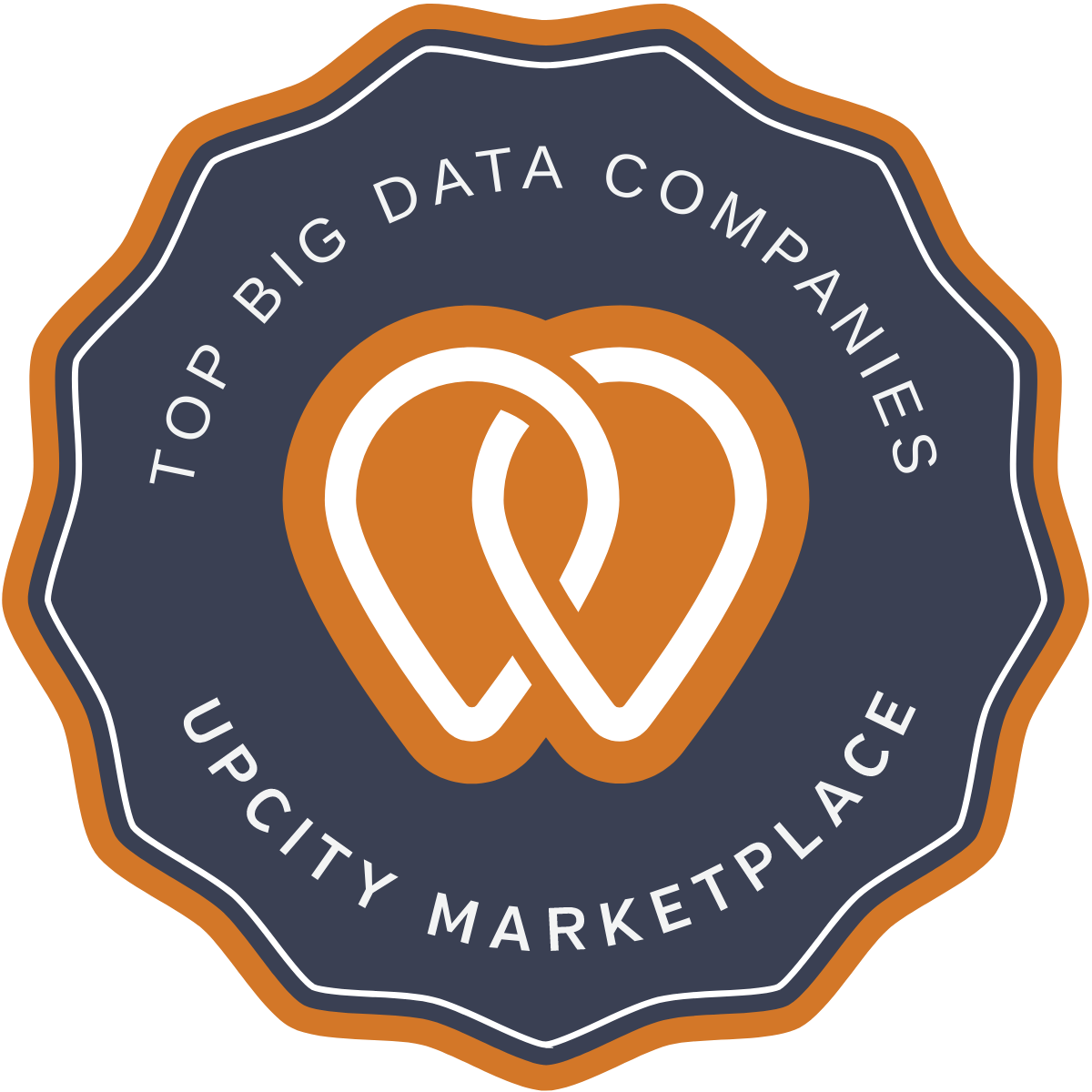 Top Big Data Companies in the United States